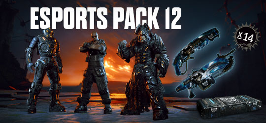 Esports Supporter Pack 12