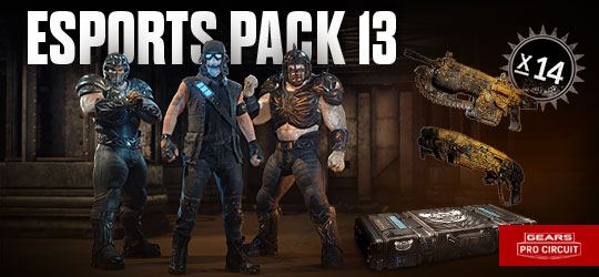 Esports Supporter Pack 13