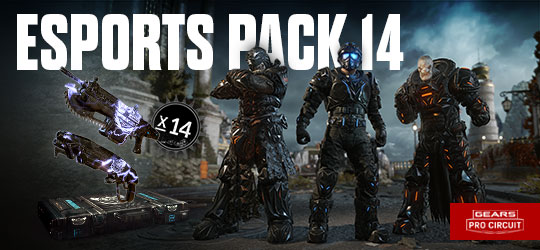 Esports Supporter Pack 14